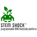 Stem Shock